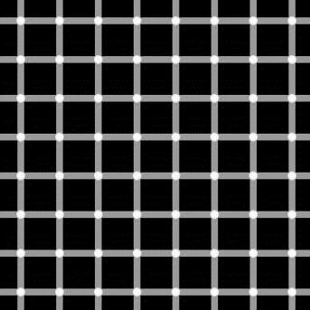 grid-illusions[1]